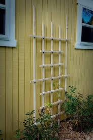 Diy Garden Trellis Ideas Best 25 Diy Trellis Ideas On Pinterest Plant Trellis Trellis