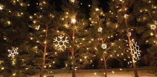 Christmas Decorations Rope Lights by 120v Elegant Rope Light Snowflake Decorative Motif Hsm Snowfb By