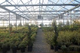 native plant nursery portland oregon cascadian nurseries u2013 wholesale supplier to landscape