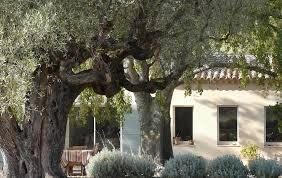chambre d hote sanary bastide sainte trinide maison d hôtes b b sanary home