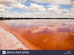 the remarkable salt lake pink lake not far from dimboola stock