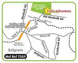 trees adventure belgrave wandering mint