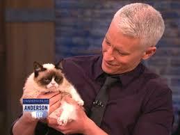 Anderson Cooper Meme - anderson cooper meets grumpy cat