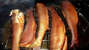 smoking fish with new smoker roaster u2013 van trekker