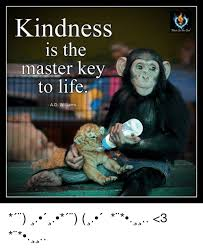 Master Key Meme - kindness is the master key to life a d williams