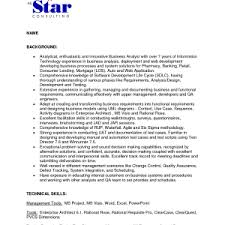 example of business resume sample analyst summary cover letter