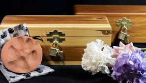 Is It Legal To Bury Your Dog In The Backyard - how to bury a dog legally when your canine companion passes away