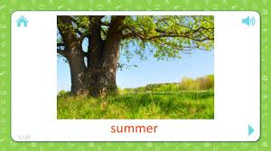 summer weather and seasons flashcards for kids youtube