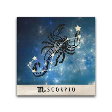 these zodiac designs comprise of the astrological sign and