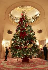 large christmas large display trees craig farms ltd