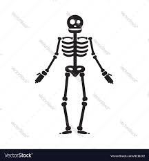 dancing halloween skeleton background happy halloween skeleton royalty free vector image