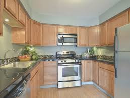kitchen best cheapest kitchen cabinets home design very nice