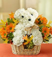 dog flower arrangement a dog able for fall ma florist same day flower