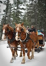 explore the montana winter with a sleigh ride through big sky