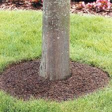 mulch tree ring 3 foot diameter gardeners edge