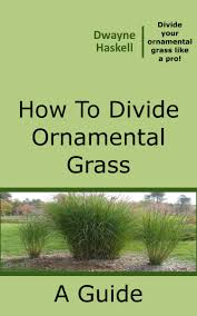 smashwords how to divide ornamental grass a book by dwayne haskell