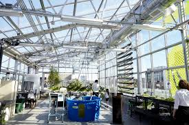Greenhouse Design High Tech Hydroponic Rooftop Greenhouse Opens Atop Williamsburg U0027s