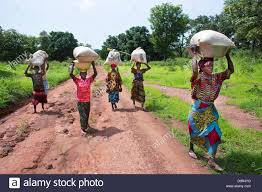 women walking to the market in central african republic stock