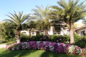 landscaping ideas for coast to coast landscaping vero beach