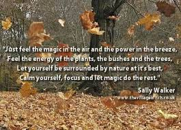 169 best celtic images on magick book of shadows and