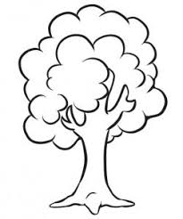 how to draw how to draw a simple tree hellokids