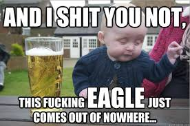 Memes Video - golden eagle snatches child memes and twitter reactions sparked