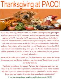 what is the dog show on thanksgiving youth coalition for activism and progress youth led and youth run