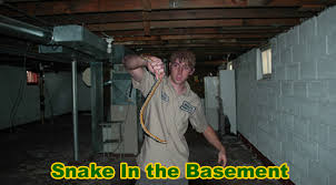 How To Dig Out A Basement by Snake In The Basement How To Get A Snake Out Of The Basement Or