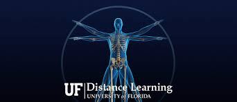 Human Anatomy And Physiology Courses Online Graduate Certificates College Of Medicine University Of Florida