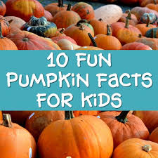 pumpkin facts for trivia and info