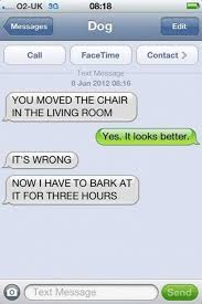 Dog Text Meme - these 35 texts from a dog are hilarious my stomach hurts from