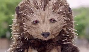Hedgehog Halloween Costume Tentacle Studio Animal Costume Maker Animals Headdresses