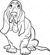 basset hound dog cartoon coloring book u2014 stock vector