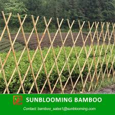 online get cheap bamboo for fences aliexpress com alibaba group