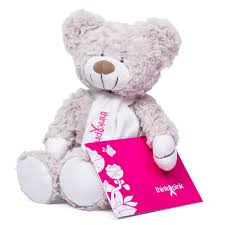 Teddy Bear Delivery Think Pink Teddy Bear Delivery In Germany By Giftsforeurope