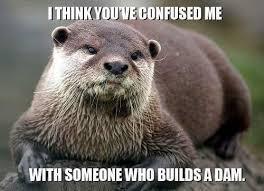 Otter Memes - angry otter meme by iloveme13 memedroid