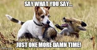 What Did The Fox Say Meme - what the fox didn t say imgflip