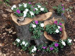 Pictures Of Tree Stump Decorating Ideas 15 Ideas How To Recycle Tree Stumps And Make Gorgeous Garden
