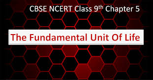the fundamental unit of life ncert book class 9 chapter 5