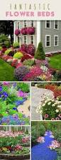 tips for preparing a new flower bed flower create and gardens