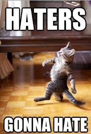 Funny Hater Memes - funny cat haters gonna hate