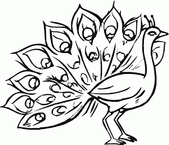 new years peacock coloring pages for preschoolers coloring point