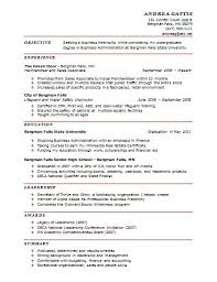 Example Of A One Page Resume by Cv 1 Page Example