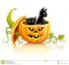halloween black background pumpkin halloween background with black cats and pumpkin royalty free