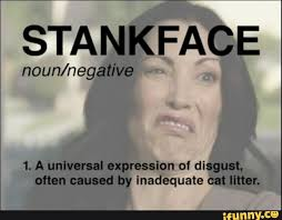 Stank Face Meme - lifestyle archives page 11 of 13 cuslately