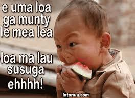 Samoan Memes - samoan jokes