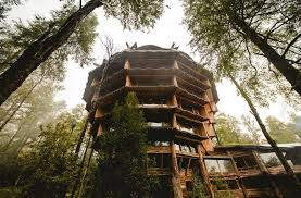 Treehouse Cleveland - huilo huilo biological reserve incredible chilean treehouse for