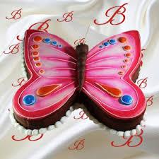 butterfly cake butterfly cake birdy s
