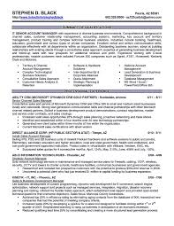 Sample Resume Objectives For Bsba by Sample Resume Account Executive Free Resume Example And Writing