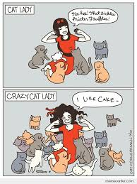 Crazy Cat Lady Memes - cat lady and crazy cat lady by ben meme center